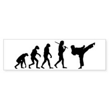 The Evolution Of Karate Car Sticker