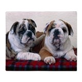 Bulldog Puppies Throw Blanket