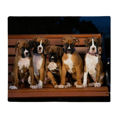 Boxer Pups Throw Blanket