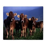 Brown Swiss Throw Blanket