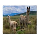 Llamas Throw Blanket