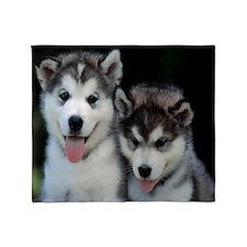 Husky Puppies Throw Blanket