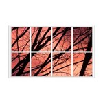Sunset Trees Window 38.5 x 24.5 Wall Peel