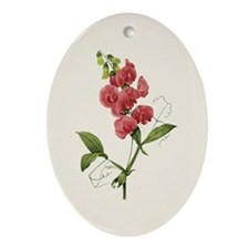 Provencal Natural Sweet Pea Ornament (Oval)