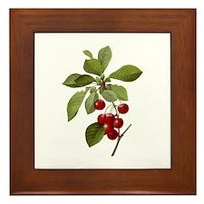 Provencal Cherries Framed Tile