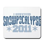 I Survived Snowpocalypse 2011 Mousepad