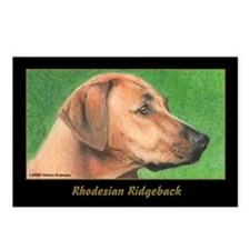 Rhodesian Ridgeback Postcards (Package of 8)
