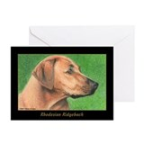 Rhodesian Ridgeback Greeting Cards (Pk of 10)