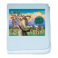St Francis & Border T baby blanket