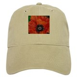 Red Oriental Poppy Baseball Cap