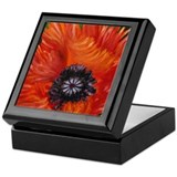 Red Oriental Poppy Keepsake Box