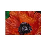 Red Oriental Poppy Rectangle Magnet