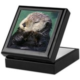 Resting Otter Keepsake Box