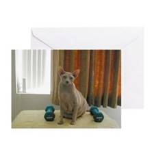 Cute Pilates cat Greeting Cards (Pk of 10)