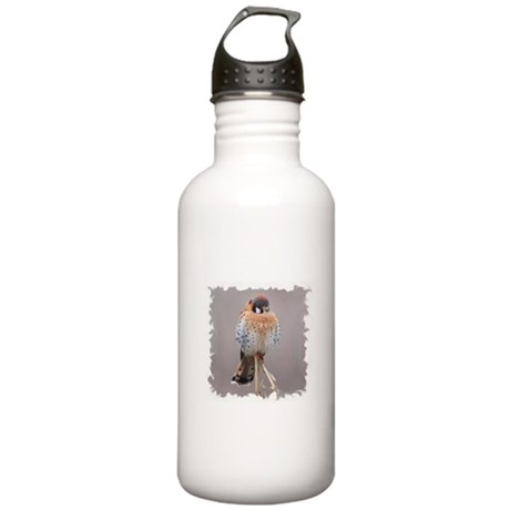 Little Falcon Stainless Water Bottle 1.0L