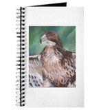 Redtailed Hawk Journal