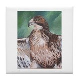 Redtailed Hawk Tile Coaster
