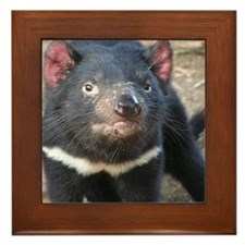 Tasmanian Devil Gifts Framed Tile