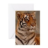 Regal Pose Greeting Card