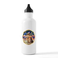 XmasStar/ 2 Labs Water Bottle