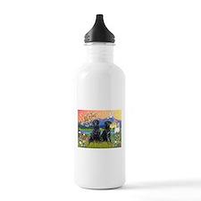 Fantasy Land/2 black Labs Water Bottle