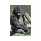 Big Gunns Gorilla Rectangle Magnet