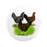 "Dark Brown Egg Hens 3.5"" Button"