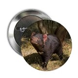 Tasmanian Devil Button