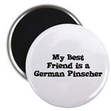 My Best Friend is a German Pi Magnet