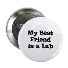 My Best Friend is a Lab Button