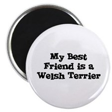 My Best Friend is a Welsh Ter Magnet