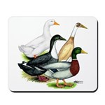 Duck Quartet Mousepad