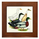Duck Quartet Framed Tile