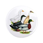 "Duck Quartet 3.5"" Button (100 pack)"