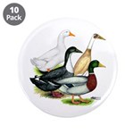 "Duck Quartet 3.5"" Button (10 pack)"
