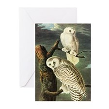 Audubon Fine Art Greeting Cards (Pk of 20)