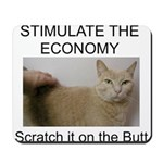 Scratch the economy on the bu Mousepad