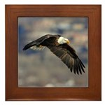 Fly By Framed Tile