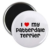 I * my Patterdale Terrier Magnet
