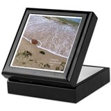 HORSESHOE CRAB Keepsake Box