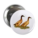 "Khaki Campbell Duck Pair 2.25"" Button (10 pac"
