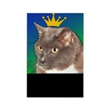 Blue the Cat Rectangle Magnet