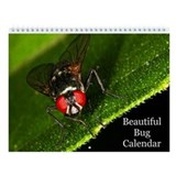 Beautiful Bug Wall Calendar