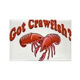 Got Crawfish Rectangle Magnet