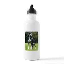 Saluki 8R012D-14 Water Bottle