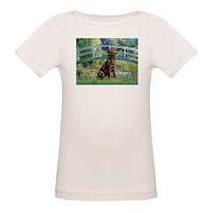 Bridge / Labrador (Choc) Organic Baby T-Shirt