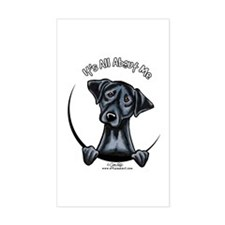 Black Lab IAAM Decal