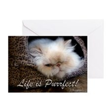 Life is Purrfect Greeting Cards (Pk of 10)