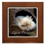 Life is Purrfect Framed Tile