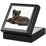 Baby Lion Keepsake Box